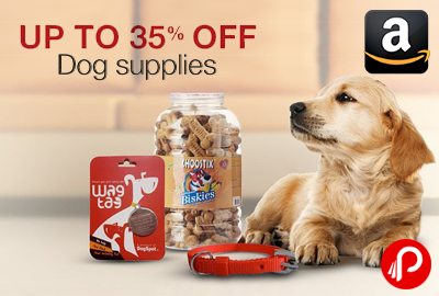 Dog Supplies Products