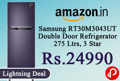 Samsung RT30M3043UT Double Door Refrigerator 275 Ltrs