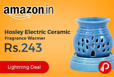 Hosley Electric Ceramic Fragrance Warmer