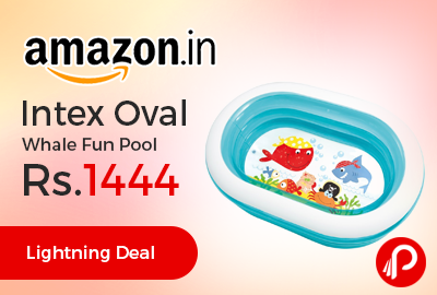 Intex Oval Whale Fun Pool just at Rs.1444