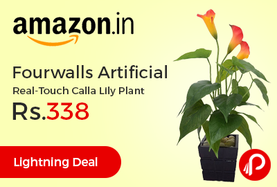 Fourwalls Artificial Real-Touch Calla Lily Plant