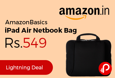 AmazonBasics iPad Air Netbook Bag