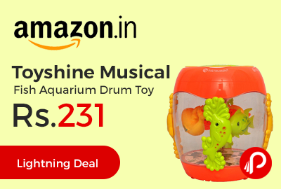 Toyshine Musical Fish Aquarium Drum Toy