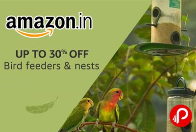 Bird Feeders & Nests